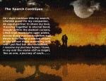 Loving Twilight